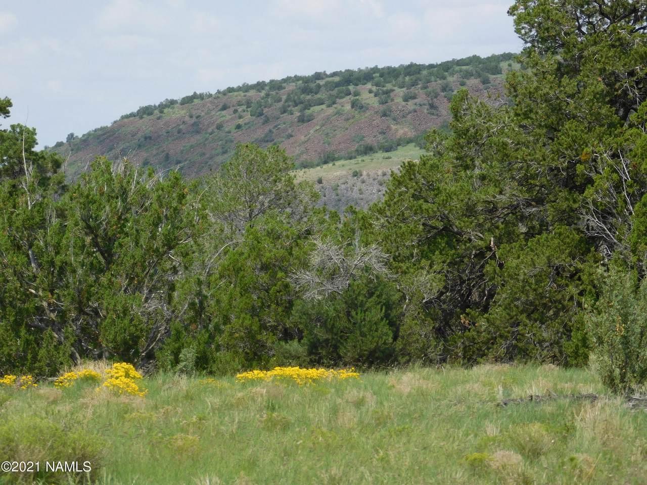 1319 Canvasback Trail - Photo 1