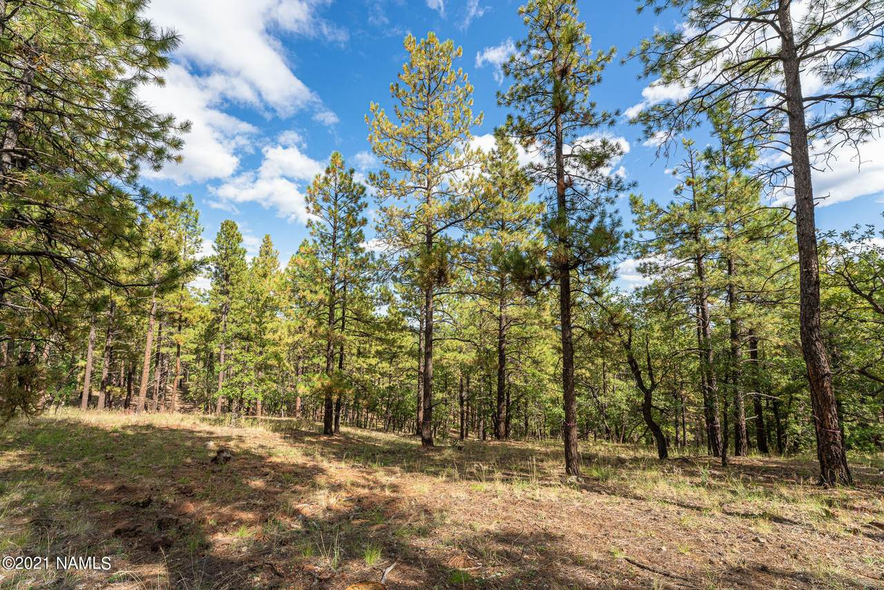 4460 Flagstaff Ranch Road - Photo 1