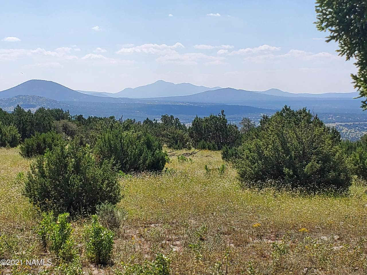 12748 Mesa View Road - Photo 1