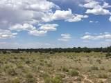 9979 Bright Sky Trail Trail - Photo 7