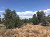 5294 Indian Meadows (Lot B) Road - Photo 3