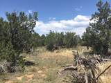 5294 Indian Meadows (Lot B) Road - Photo 5