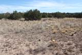 30217001g Tanner Road - Photo 12