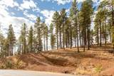 4705 Flagstaff Ranch Road - Photo 1