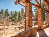 4705 Flagstaff Ranch Road - Photo 19