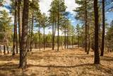 4705 Flagstaff Ranch Road - Photo 3