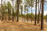 4705 Flagstaff Ranch Road - Photo 5