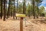 4705 Flagstaff Ranch Road - Photo 6