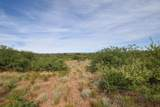 5.96 Acres Cisco Trail - Photo 17