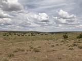 10558 High Butte Drive - Photo 12