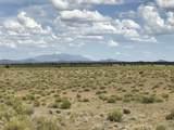 10558 High Butte Drive - Photo 14