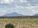 10558 High Butte Drive - Photo 3