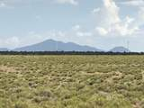10558 High Butte Drive - Photo 5