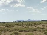 10558 High Butte Drive - Photo 9