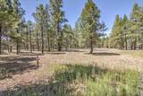22846 Fox Ranch Road - Photo 4