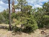 1799 Pine Ridge Drive - Photo 10