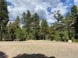1799 Pine Ridge Drive - Photo 15