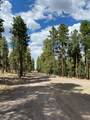 1799 Pine Ridge Drive - Photo 16