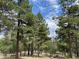 1799 Pine Ridge Drive - Photo 2