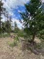 1799 Pine Ridge Drive - Photo 5