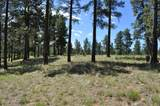 2733 Byrds View Drive - Photo 1