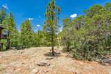 1140 Cactus Wren Circle - Photo 4