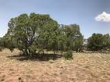 8346 Lariat Road - Photo 7