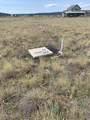 7131 Whitman Trail - Photo 7