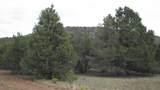 80015011b Rawhide Trail - Photo 2