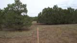 80015011b Rawhide Trail - Photo 6