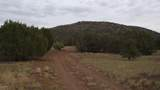 80015011b Rawhide Trail - Photo 8