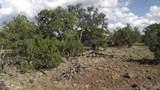 802 Hualapai Trail - Photo 1
