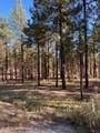 4795 Flagstaff Ranch Road - Photo 3