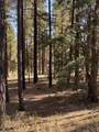 4795 Flagstaff Ranch Road - Photo 4