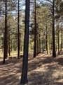 4795 Flagstaff Ranch Road - Photo 5