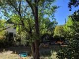 823 Clay Avenue - Photo 7