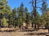 623 Double A Ranch Road - Photo 33