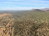 8380 Forest Service 510C Road - Photo 21