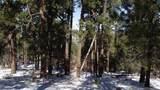 1670 Canyon View Loop - Photo 3