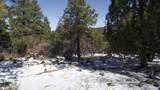 1670 Canyon View Loop - Photo 6