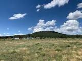 3600 Mountain Man Trail - Photo 1