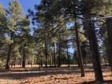 2869 Castle Pines Drive - Photo 3