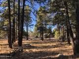 2869 Castle Pines Drive - Photo 5