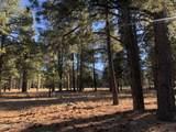 2869 Castle Pines Drive - Photo 7