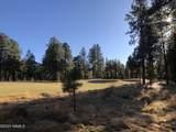 2869 Castle Pines Drive - Photo 9