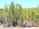 51852 Aguila Lane - Photo 1