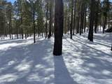 4775 Flagstaff Ranch Road - Photo 5