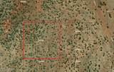 10 Acres - Parcel # 500-13-015 - Photo 12