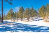 1600 Castle Hills Drive - Photo 50