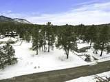 2831 Burning Tree Drive - Photo 14